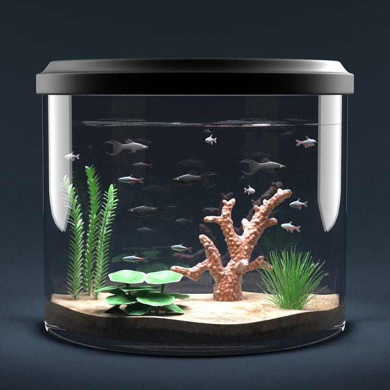 aquarium equipped decorations 3d model
