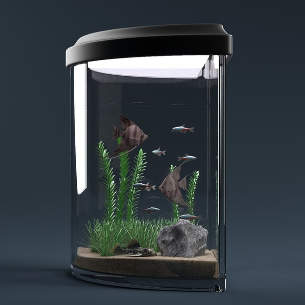 aquarium equipped decorations 3ds