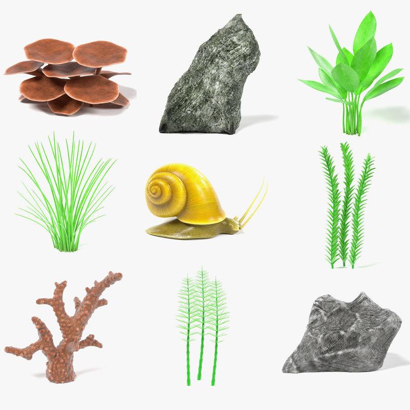 aquarium decoration snail 3d model