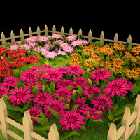 3d model gazania garden