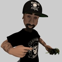 3d model toon cypress hill