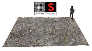 3d obj coniferous forest soil 8k