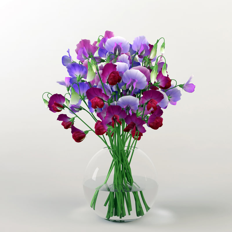 bouquet sweet peas 3d max