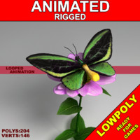 Animated ButterflyGreenWing