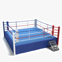 boxing ring 3ds