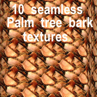 Palm Tree Bark Collection 3