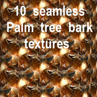 Palm Tree Bark Collection 4