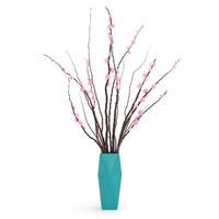 Sakura in a vase