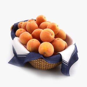 basket apricots hq 3d max