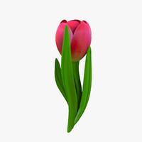 tulip modeled 3d model