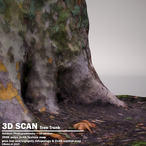 3dsmax scan tree trunk