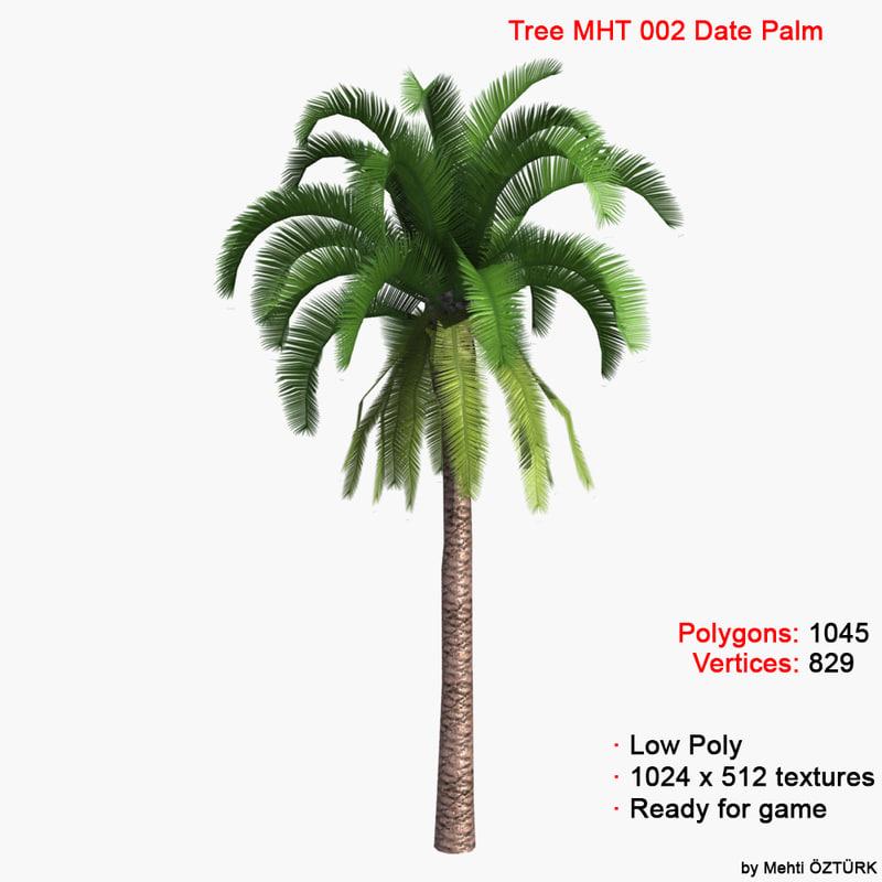 max palm date tree