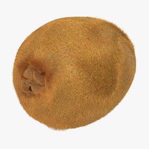 kiwi fur 3d max