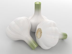 garlic 3d max