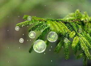 water drops 3d c4d