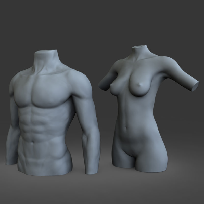 3d male female mannequins