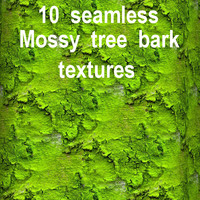 Mossy Tree Bark Collection 5