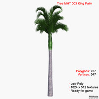 palm king tree 3d model