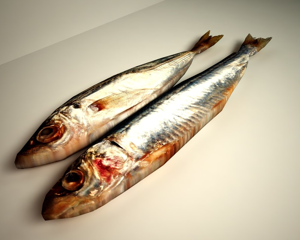 3d sardines model