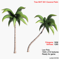 palm coconut tree 3d model