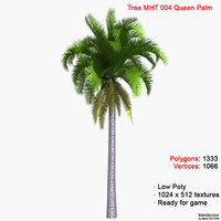 3d model palm queen tree