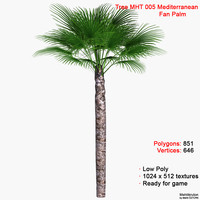palm mediterranean fan 3d max