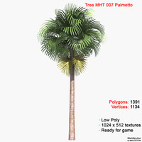 3d model palm palmetto tree