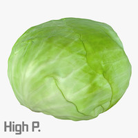 cabbage photorealistic scaned 3d max