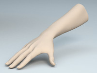 female arm 3d 3ds