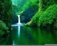 Nature background music