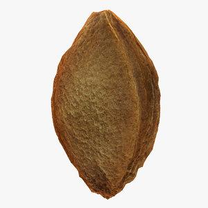 3dsmax apricot kernel
