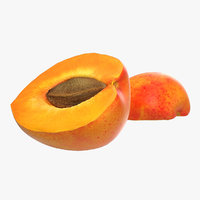 3d apricot cross section 3