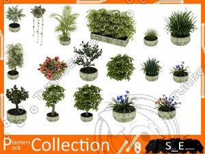 trees plants 3d max
