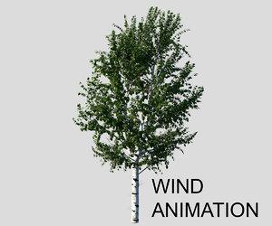 birch tree animation wind max