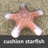 cushion starfish 3d 3ds
