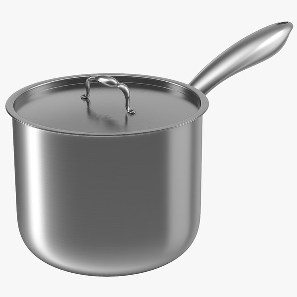 stainless saucepan max
