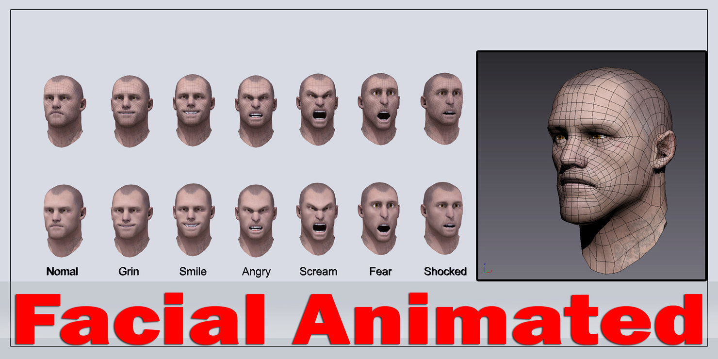 3d realistic male head - model