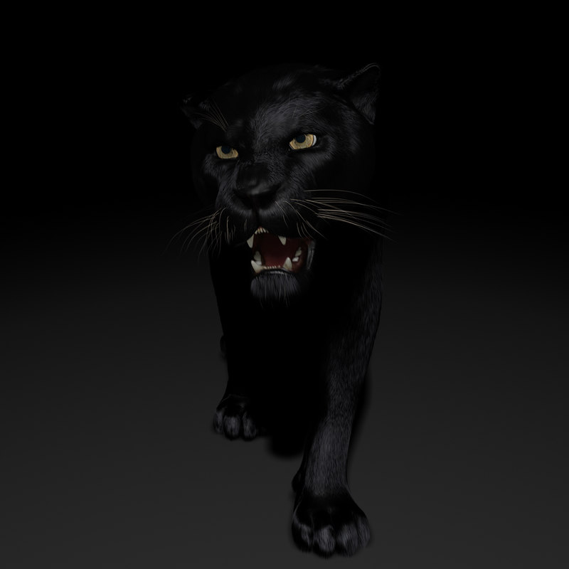 ma black panther rigged 2