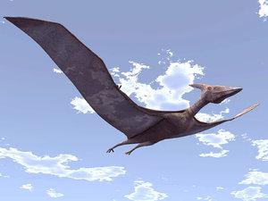 pteranodon 3d max