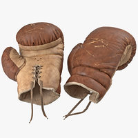 Old Leather Boxing Glove(1)