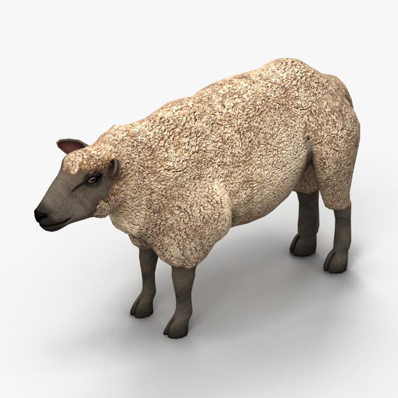 lamb sheep 3d model