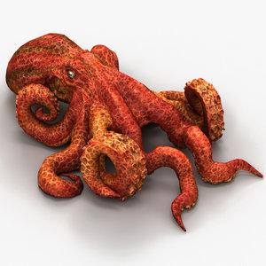 3d max octopus mollusc cephalopod