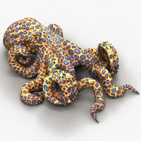 max octopus