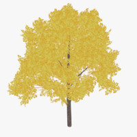 ready autumn tree 3d 3ds