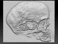 maya skull stone