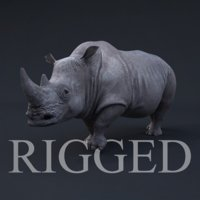 3d realistic rhino rig
