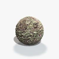 Prickly Bush Seamless Texture
