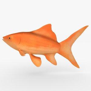 goldfish swim obj