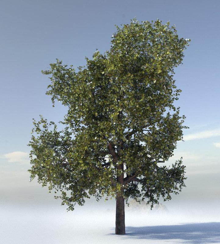 tree quads 3d obj