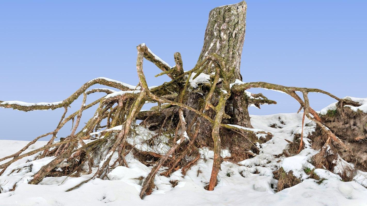 roots snow 3d max